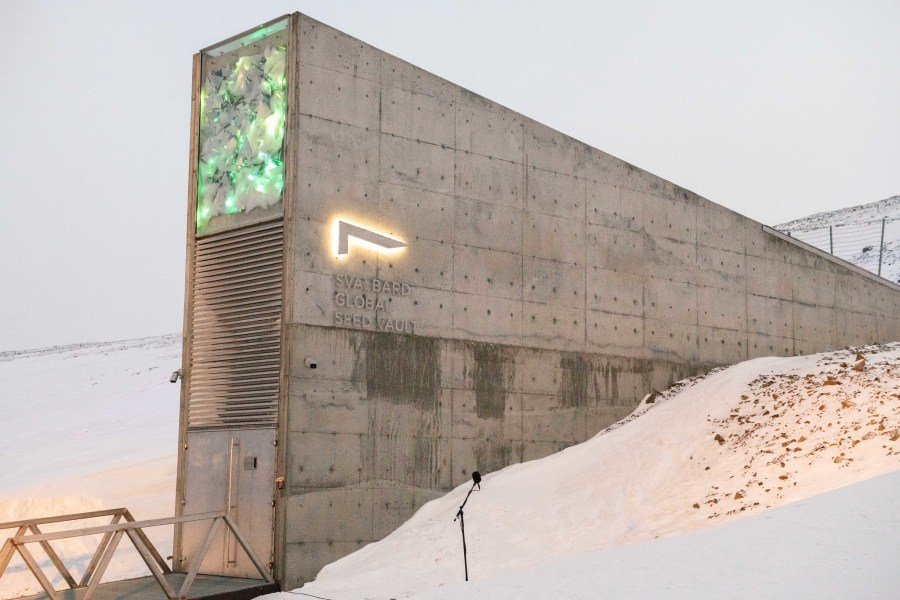 The Svalbard Global Seed Vault in February, 2020. Global Crop Diversity Trust, Flickr