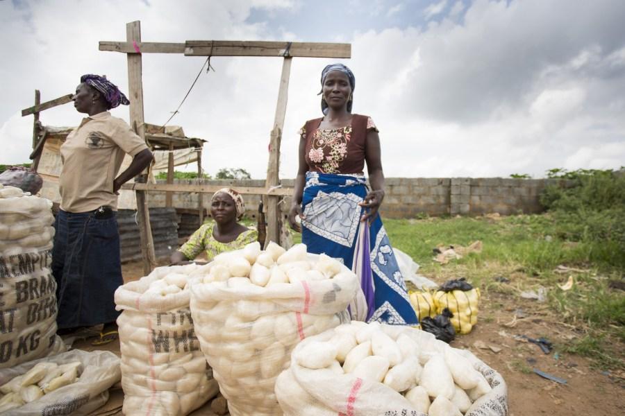 Female farmers selling fufu, a staple crop in Nigeria. Jamed Falik, Flickr