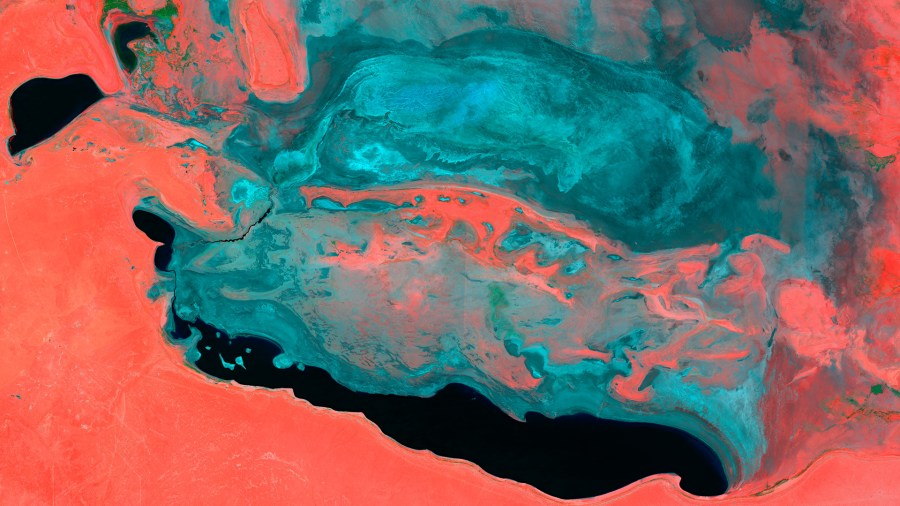 As water disappears, the Aral Sea becomes saltier. In this image, the blue is salt aggregations, the black is water and the red is barren land. Sentinel Hub, Flickr