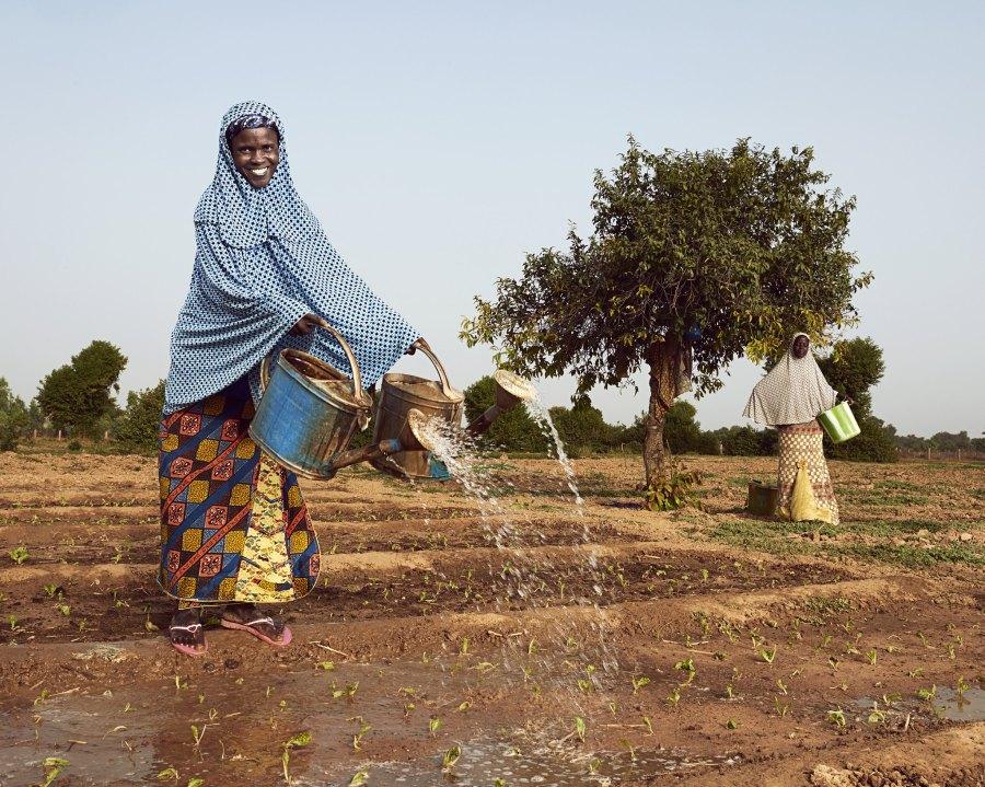 Une coopérative de femmes au Niger qui a transformé des terres arides en fermes fertiles. Collection de photos de la Banque mondiale