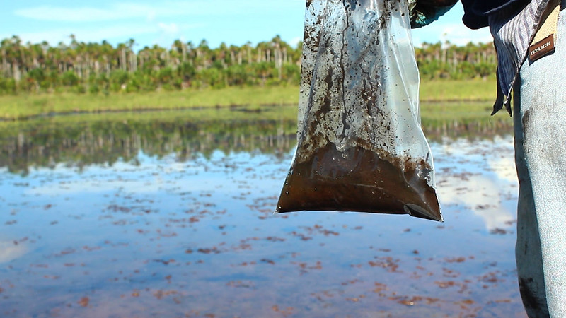 Oil spills affecting the Marañón River. Ministerio del Ambiente, Flickr