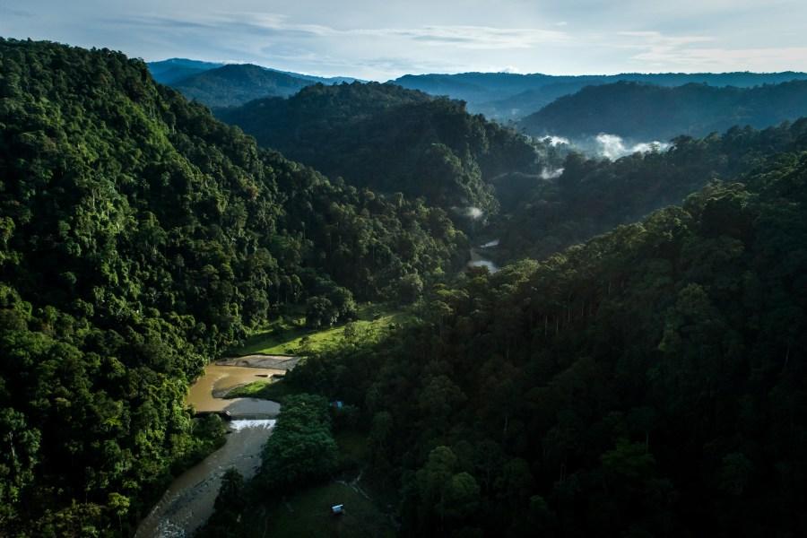 Fincas agroforestales rodean los bosques tropicales en Lampung, Indonesia. Nanang Sujana,CIFOR