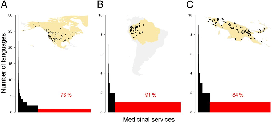 The dots on the maps indicate the distribution of languages that cite medicinal plants. The red bars show the percentage of medicinal knowledge restricted to just one language in North America (A), the northwestern Amazon (B) and New Guinea (C).