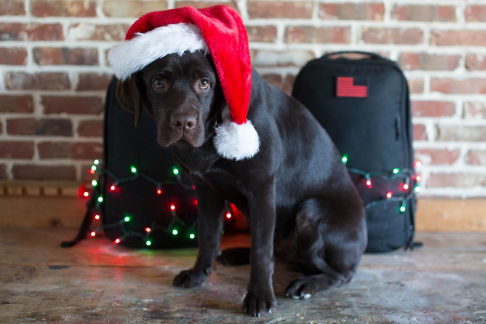 Ho Ho Ho Gear Prices GORUCK Black Friday
