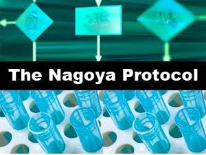 Image result for Nagoya Protocol