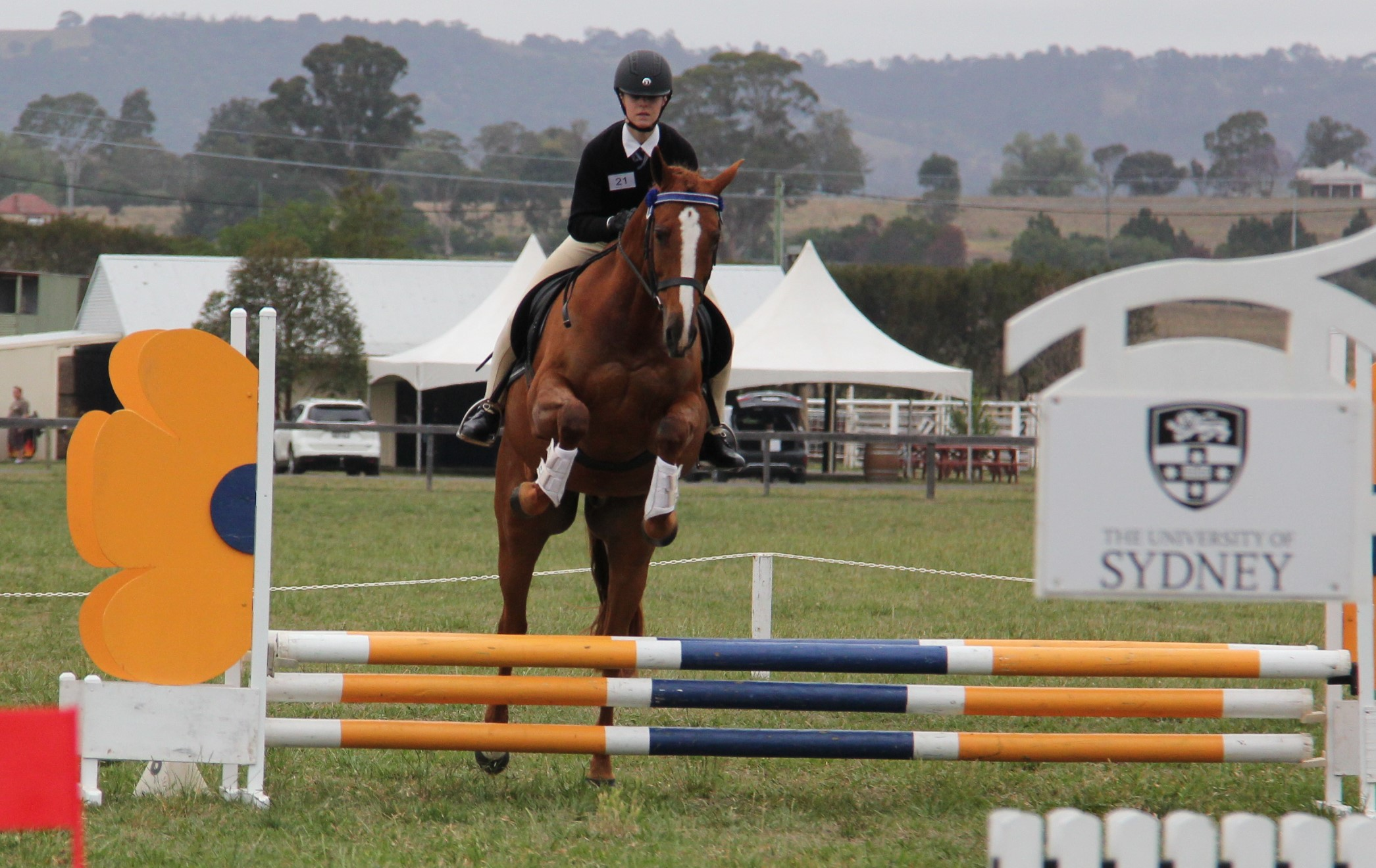 Camden Interschools Equestrian Competition