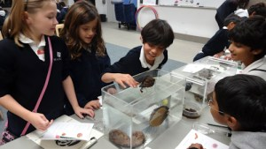 Third Graders Enjoy Hands-On Learning During Educational Field Trip