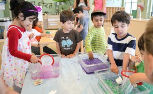Preschool's New Summer Program Features Fun Beach and Wilderness Themes