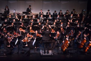 Harker Orchestras and Soloists Entertain at Spring Concert