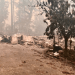 Efforts to help Harker faculty and staff affected by California fires