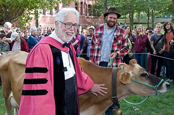 In a ceremony to commemorate the retirement of Harvey Cox as the Harvard Divinity School's Hollis Professor of Divinity, a Jersey cow grazed in the Yard adjacent to the Memorial Church, resurrecting a 200-year-old practice.
