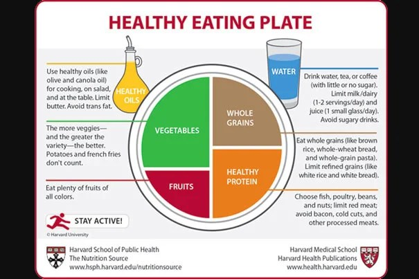 The Food Plate Healthy Eating