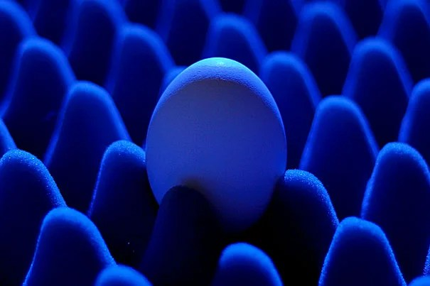 Harvard researchers have demonstrated a new design for LEDs by nestling quantum dots in an insulating structure that resembles an egg crate.