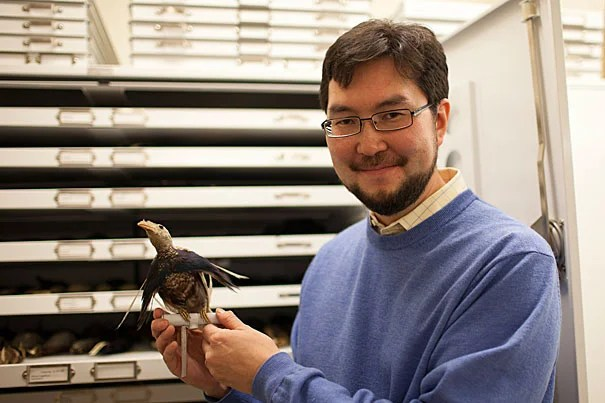 It's been 75 million years since birds lost their teeth, to this day mutant chickens will grow teeth — teeth that bear a close resemblance to their ancient and remarkably close relative, the alligator, Arkhat Abzhanov, associate professor of organismic and evolutionary biology, told his Harvard Museum of Natural History audience.