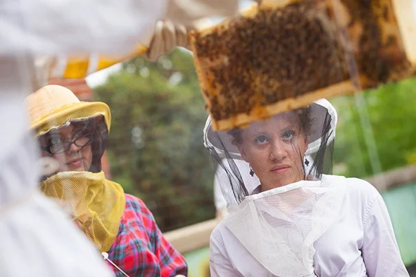 Harvard's new Undergraduate Beekeepers group (HUB) has their first meeting of the year followed by a tour of their hive on the roof of Pforzheimer House in the Quad at Harvard University. Li Murphy '15 holds up the a section of the hive as Georgia Shelton '14 (from left) and Amalee Beattie '17 observe. Stephanie Mitchell/Harvard Staff Photographer