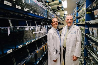 "The Harvard Stem Cell Institute has carried a discovery from the lab bench to the clinic. ""The fact that we were able to translate someone's scientific discovery from down the hall into a patient just a few hundred yards away is the beauty of working here,"" said HSCI-affiliated faculty member Corey Cutler (left), pictured with Leonard Zon, chair of the HSCI."