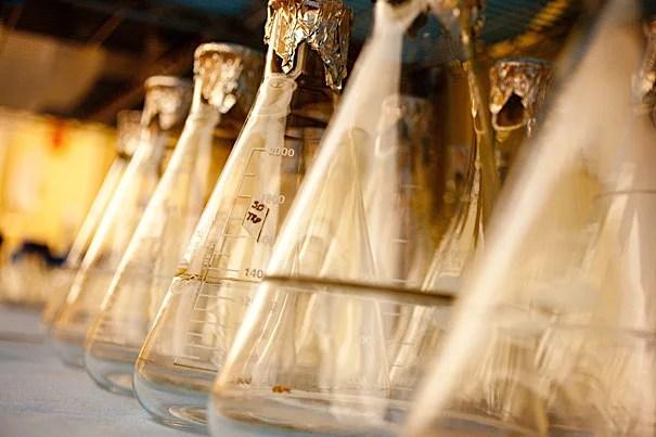 Science stock photos of beakers at Harvard University's Wyss Institute.  Rose Lincoln/Harvard Staff Photographer