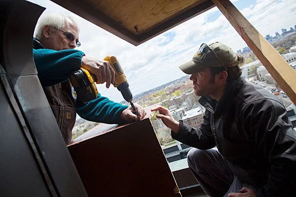 Thomas French (left, photo 1), assistant director of the Massachusetts Division of Fisheries and Wildlife, and state wildlife biologist David Paulson install a nest box high on Memorial Hall's tower (photo 2) in hopes that a nesting pair of peregrine falcons will one day make it their home.