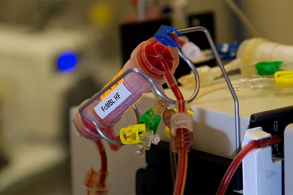This blood-cleansing device connected to a dialysis-like circuit has a dense pack of hollow fibers whose inner surfaces are covered with the Wyss Institute's genetically engineered Mannose-binding lectin (MBL) protein, called FcMBL. When septic blood is streamed through the device, FcMBL effectively extracts viruses, fungi, and parasites as well as toxins and dead pathogen fragments released into the bloodstream by antibiotic killing.