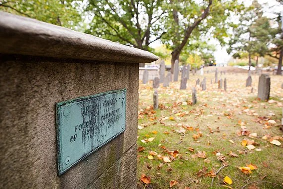 Executive Director of the Cambridge Historical Commission Charles Sullivan tours through the Old Burial Ground in Harvard Square where numerous notable Harvard figures are buried. Pictured here is the tombstone for name Urian Oakes. Stephanie Mitchell/Harvard Staff Photographer