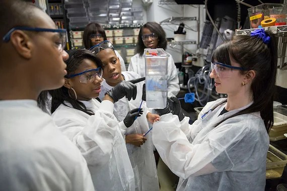 Students from Mott Hall Bridges Academy, Jermont Haines, Tukoya Boone, and Aaron Abdulmalik, and Bianca Nfonoyim '15 (background right)learn how zebrafish are used in scientific research to study embryonic development with Tessa Montague, GSAS student inside the Biology Labs at Harvard University. In the background is Zion Edwards (left) and Bianca Nfonoyim '15. Harvard Staff Photo: Kris Snibbe