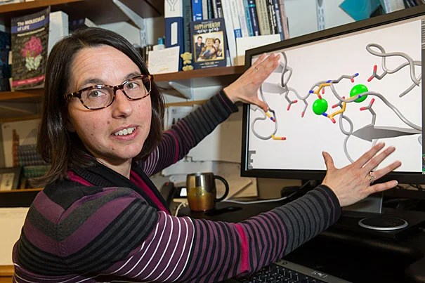 Professor Rachelle Gaudet is the co-author of a new study on aural mechanics that identifies the proteins involved in converting the mechanical action of inner ear filaments —called tip links — into neural signals that the brain can understand.