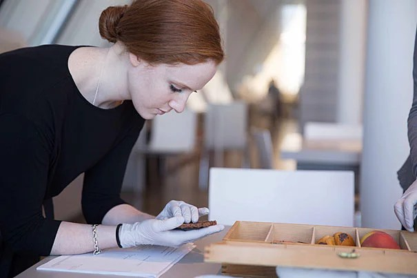 Maille Radford '17 is the first College graduate to earn joint degrees in chemistry and the history of art and architecture, and will pursue two master's degrees at the Art Museum at the Courtauld Institute of Art in London as a Marshall's Scholar.