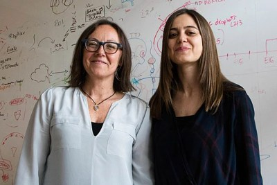 Stanley Center member Paola Arlotta (left) and postdoctoral fellow Giorgia Quadrato have produced long-cultured brain organoids that have the potential to advance our understanding of brain development and disorders.