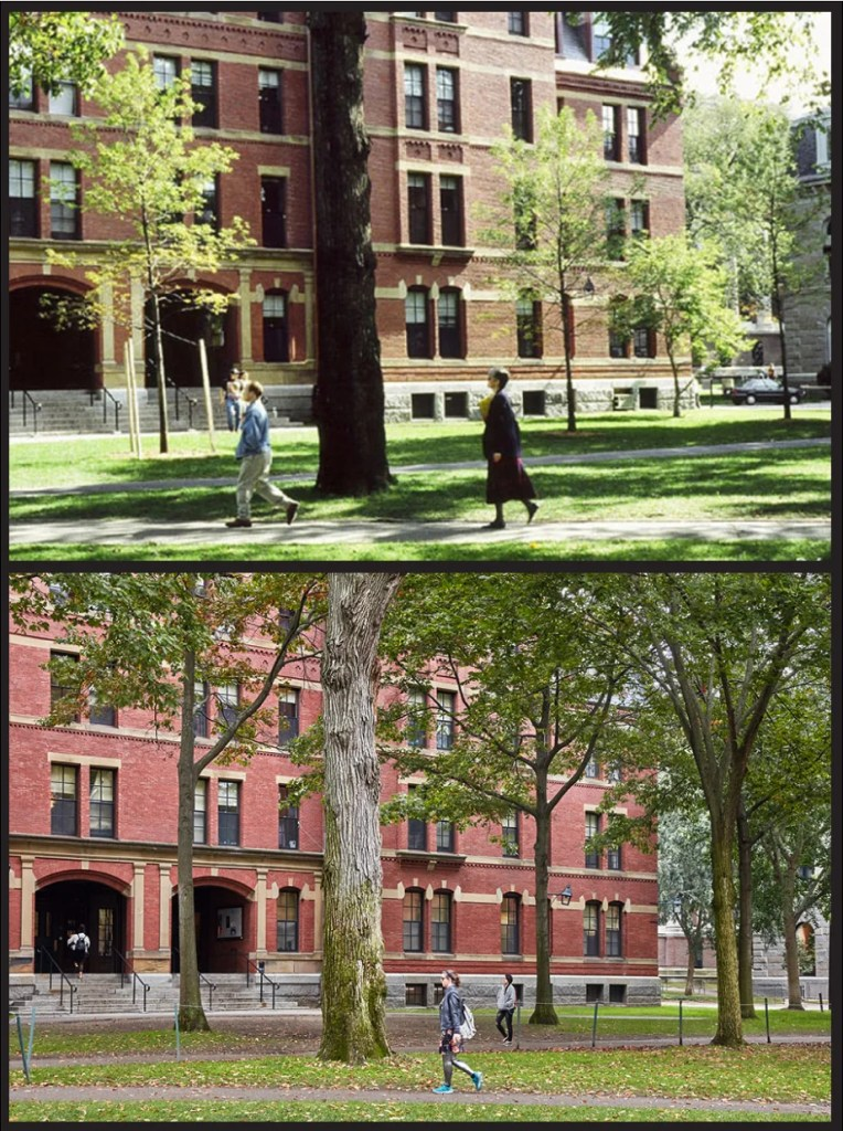Weld Hall, 1990s vs. 2017