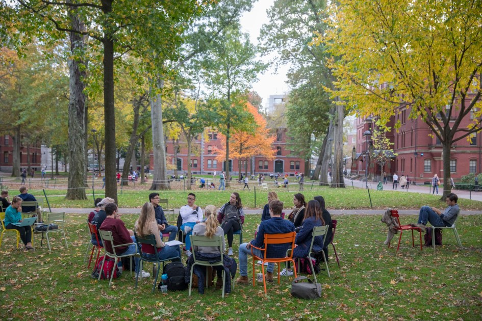 Before-after photos accent Harvard Yard's evolving nature