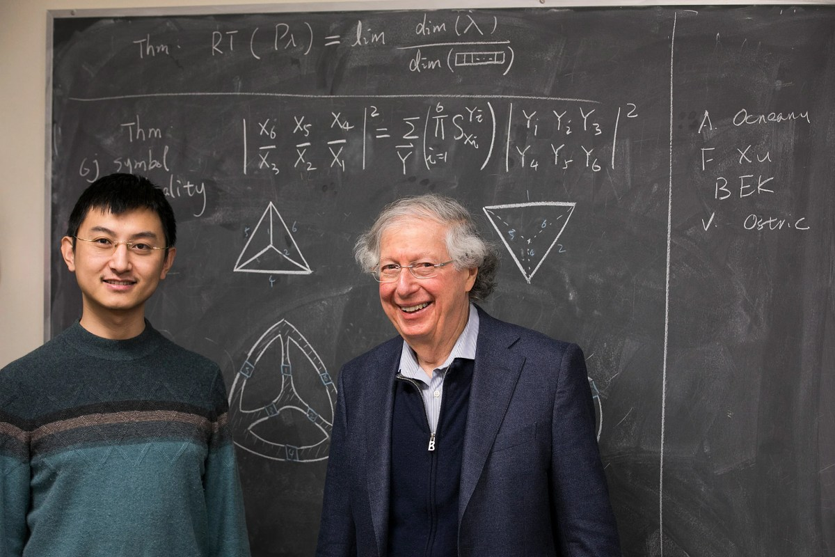 Zhengwei Liu (left) and Arthur Jaffe are leading a new project to expand quon, their pictorial math language developed to help understand quantum information theory, into new fields from algebra to M-theory.