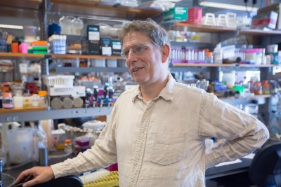The National Science Foundation and the Simons Foundation have awarded a grant to Harvard scientists to create a research center, to be led by Professor Andrew Murray, aimed at bringing biologists and mathematicians together to answer central questions about living systems.