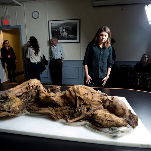 Emily Venable examines the mummy