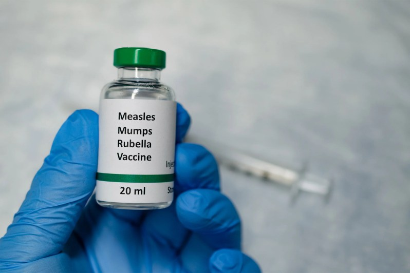 Study suggests how measles depletes body's immune memory