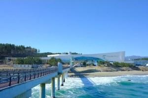 국립 해양 과학관 공공 기관 '신 지정', 한국 건설 관리 공단 '오프'
