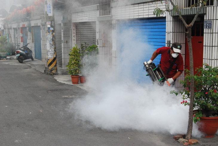 Потенциальная угроза лихорадки денге после тайфуна
