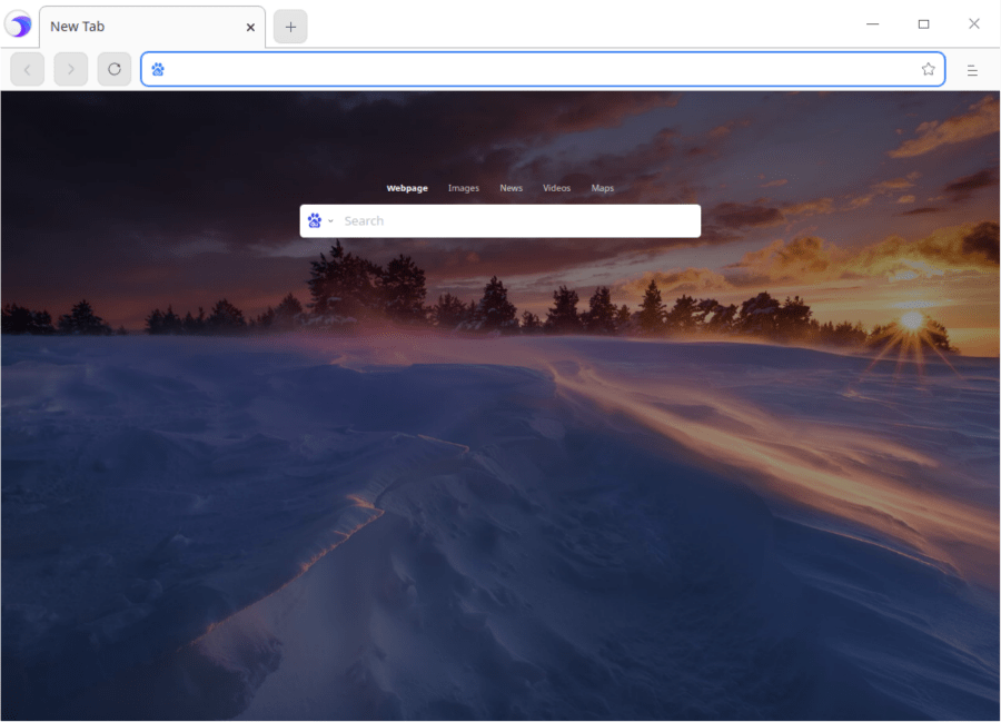 Deepin 20.1 Browser
