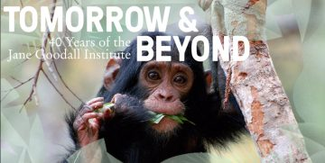 Happy Birthday to Us: Taking Conservation into the Future!