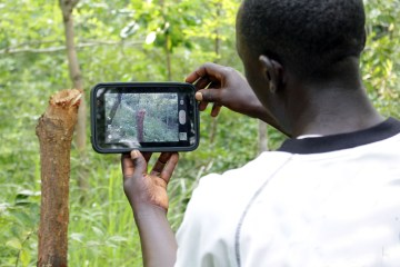 World's Forests Given a Fighting Chance Thanks to Forest Watcher App