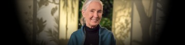 Five Things You'll Learn in Dr. Goodall's MasterClass