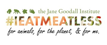 #IEatMeatLess For People, Other Animals, and the Environment
