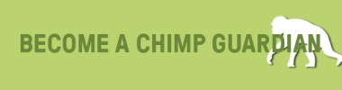 chimp guardian button