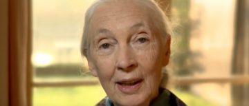 Dr. Jane Goodall's Statement in Defense of the Endangered Species Act