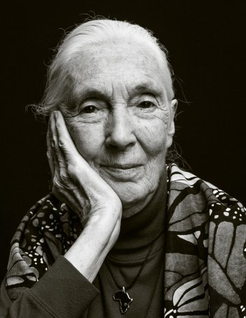 Dr. Jane Goodall's Most Inspiring Quotes of 2019