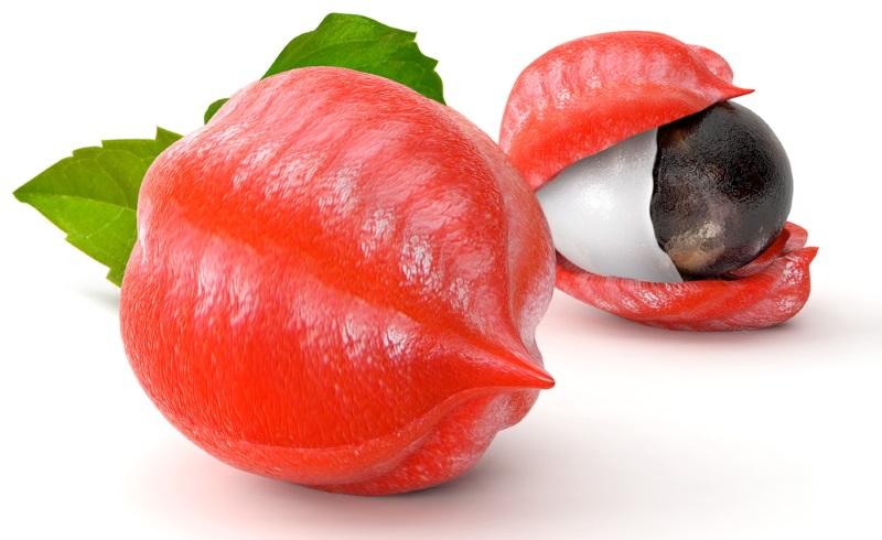 Guarana Fruit