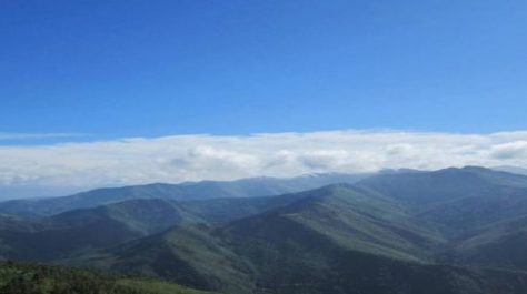 Best things to do in Nagaland