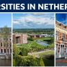 universities in the Netherlands