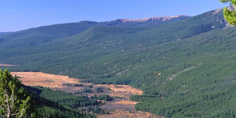 Kawuneeche Valley