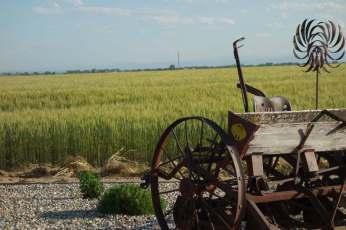 Peppler Farm
