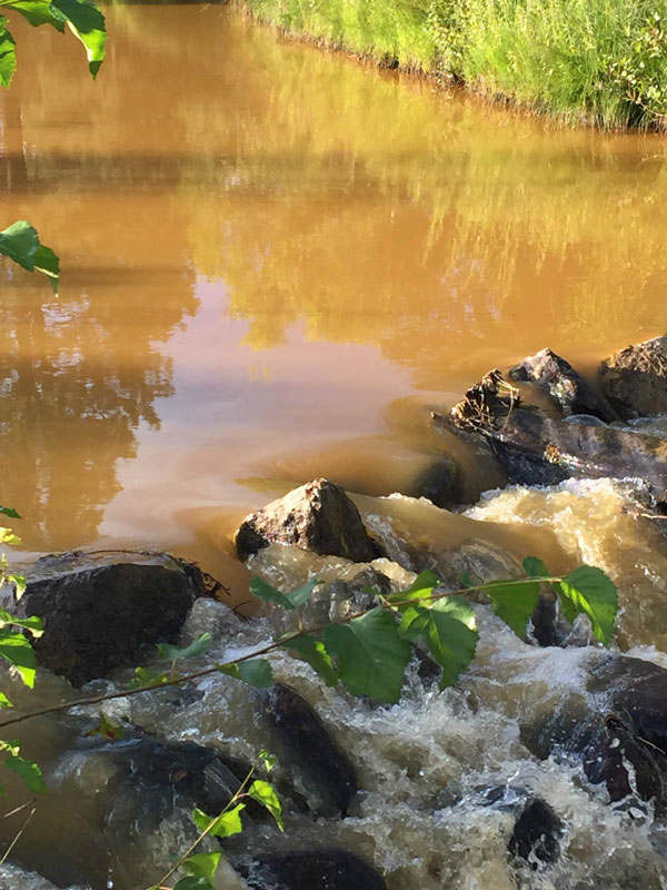 orange animas river
